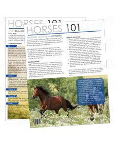 Horses 101 Tear Pad (50 Sheets)